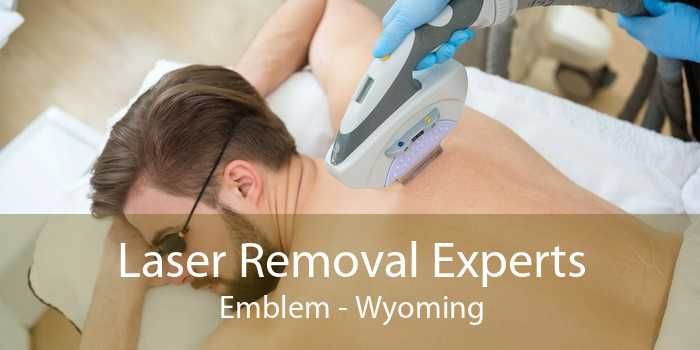 Laser Removal Experts Emblem - Wyoming